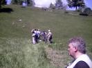 prezid_2005_15